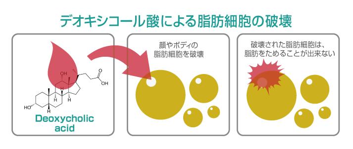 東京銀座のレティシアクリニック 脂肪溶解注射カベリン